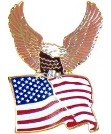 Eagle & Waving US Flag Pin