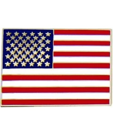 Large US Flag Pin