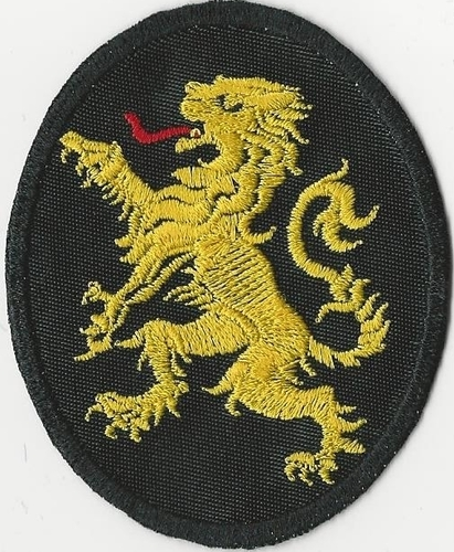"Lions of Judah Rampant Lion patch, 3"" oval"